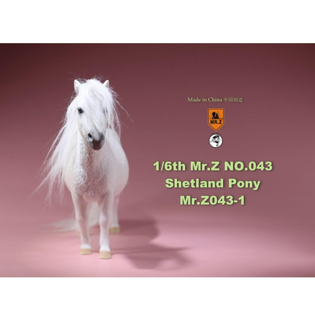 [PRE ORDER] Real Animal Series No.43 - 1/6th Scale Shetland Pony