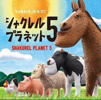 厚道星球5-綿羊