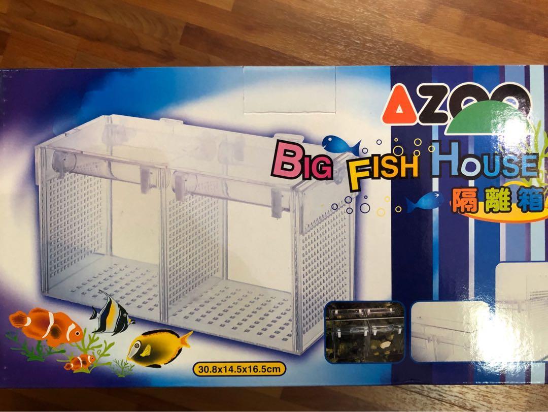 Azoo quarantine box tank