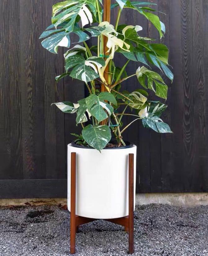 Planter Plant Stand Mahogany Wood