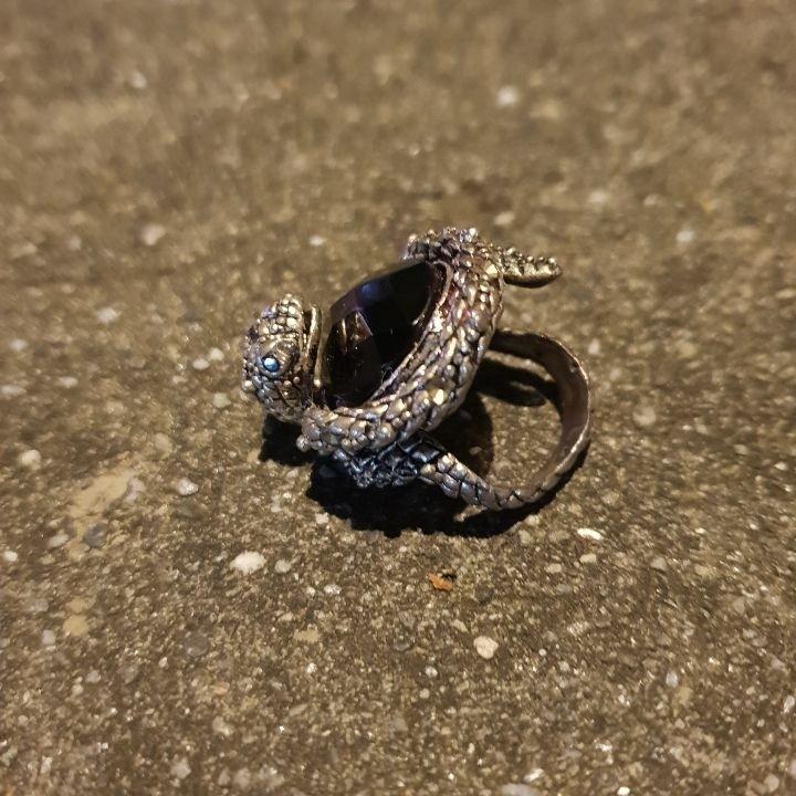 男款925銀戒,蛇頭纏繞著寶石,非常罕見,唯此一個