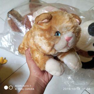 #maugendongan Boneka Kucing