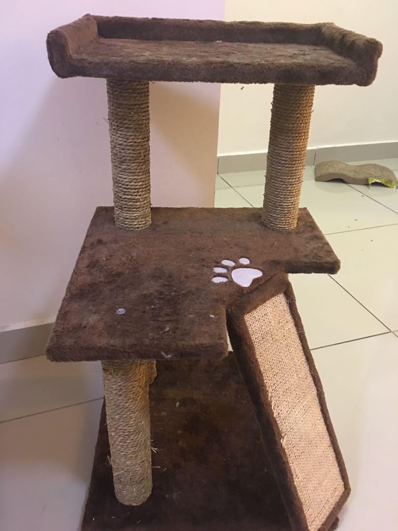 Cat Tree with FOC cat brush