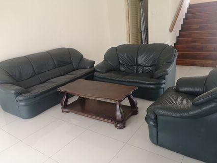 Sofa set with coffe table