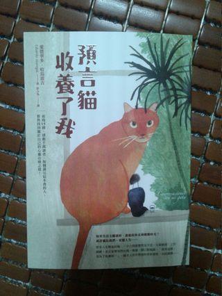 預言貓收養了我~二手小說