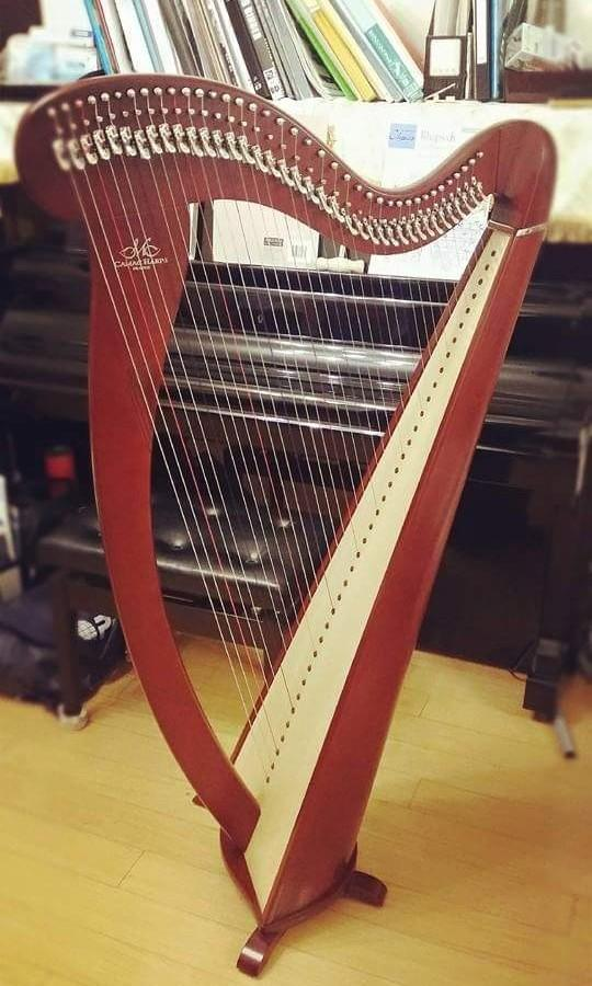 Camac Melusine 38-string lever harp 法國Camac愛爾蘭式38弦豎琴