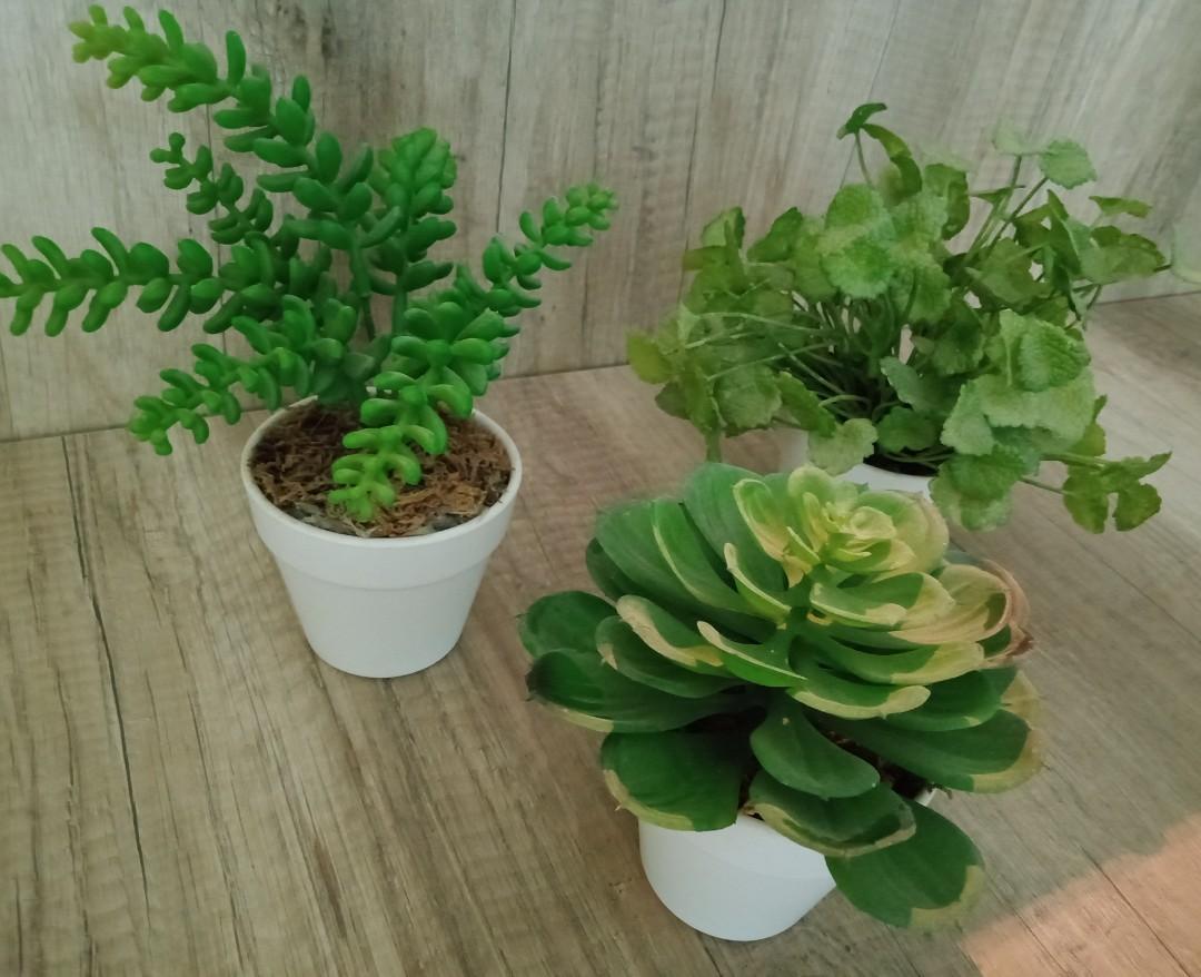 SALES! Mini artificial pot plant