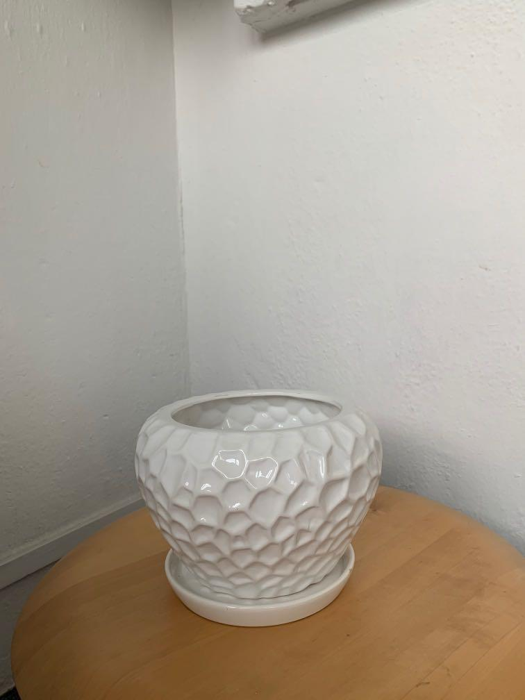 Free Textured Plant Pot with Dish