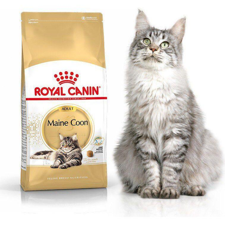 Royal Canin Adult Maine Coon 4kg - $68.00