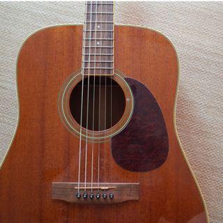 Carvin Cobalt 350 木吉他