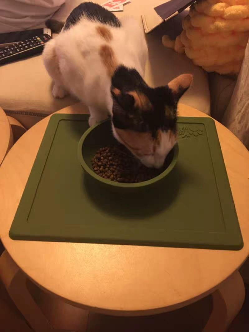 Silicon Anti-spill Pet Dining Bowl