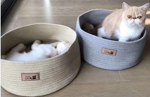 全新現貨貓窩