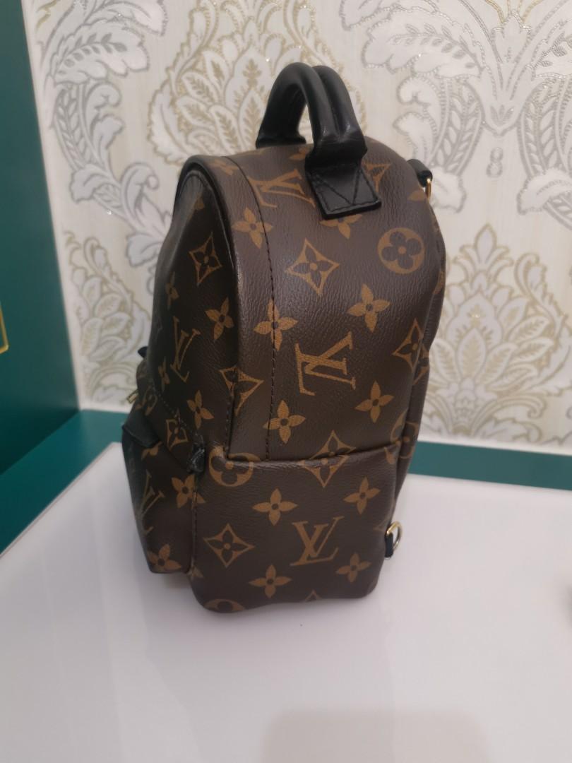 LV Louis Vuitton Palm Spring Mini Backpack Monogram Canvas