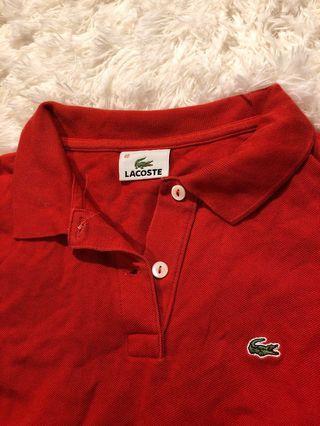紅色polo衫