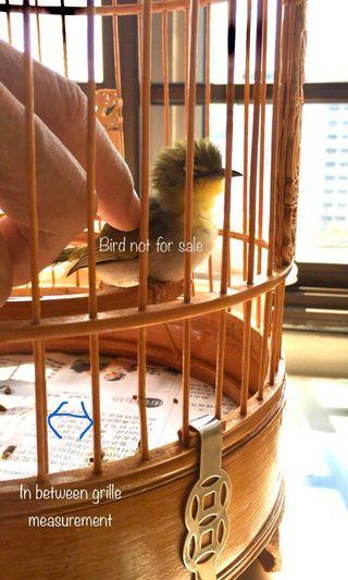 Longsan measurements for bamboo cages, puteh, huamei, shama, Jambul, bird cage accessories