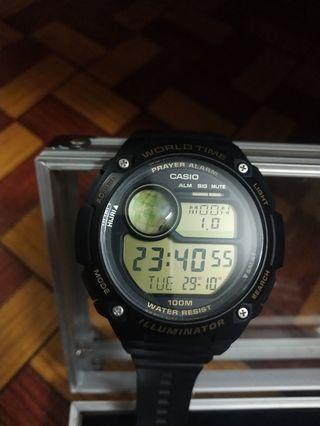 Casio CPA-100