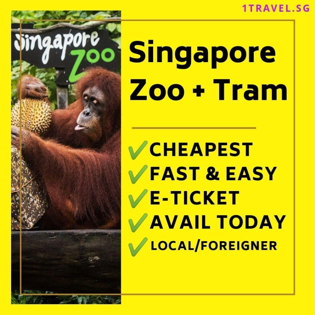 Singapore Zoo + Tram Ticket