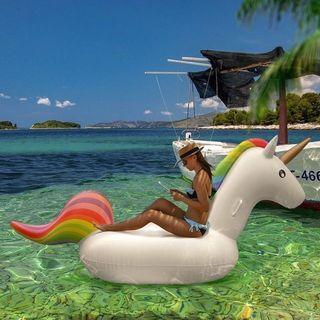 Giant Inflatable Float- Rent