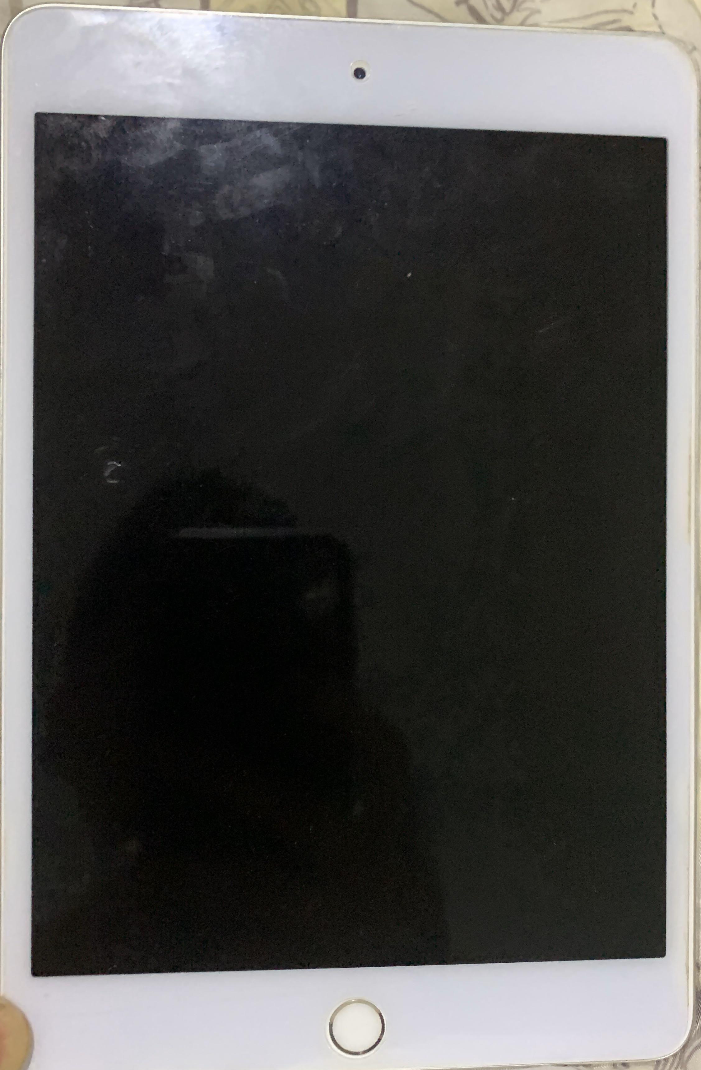 IPad mini 4 64GB silver (excellent condition) wifi