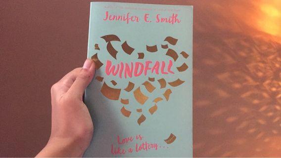 Windfall novel