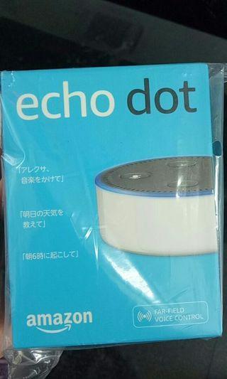 智能管家echo dot 日本帶回