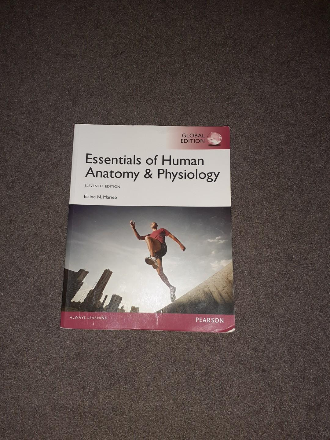 Essentials of Human Anatomy and Physiology textbook