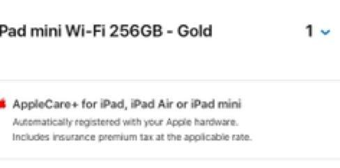 BRAND NEW iPad Mini 5 256GB