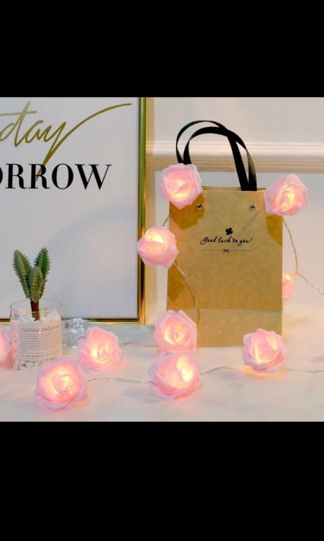 Rose fairy light wedding decorations / wedding album table / wedding reception