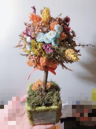 開花的樹 花藝設計擺設