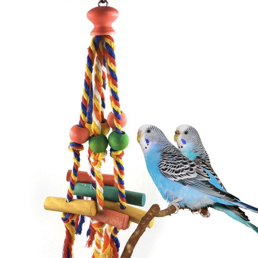 Cotton rope biting toy parrots!