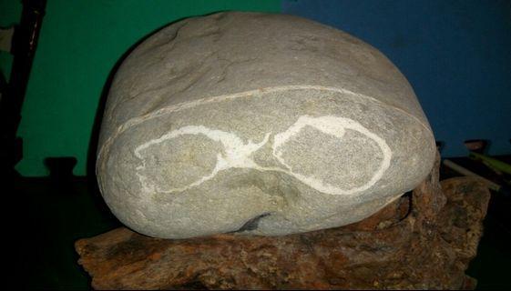 觀賞藝術石