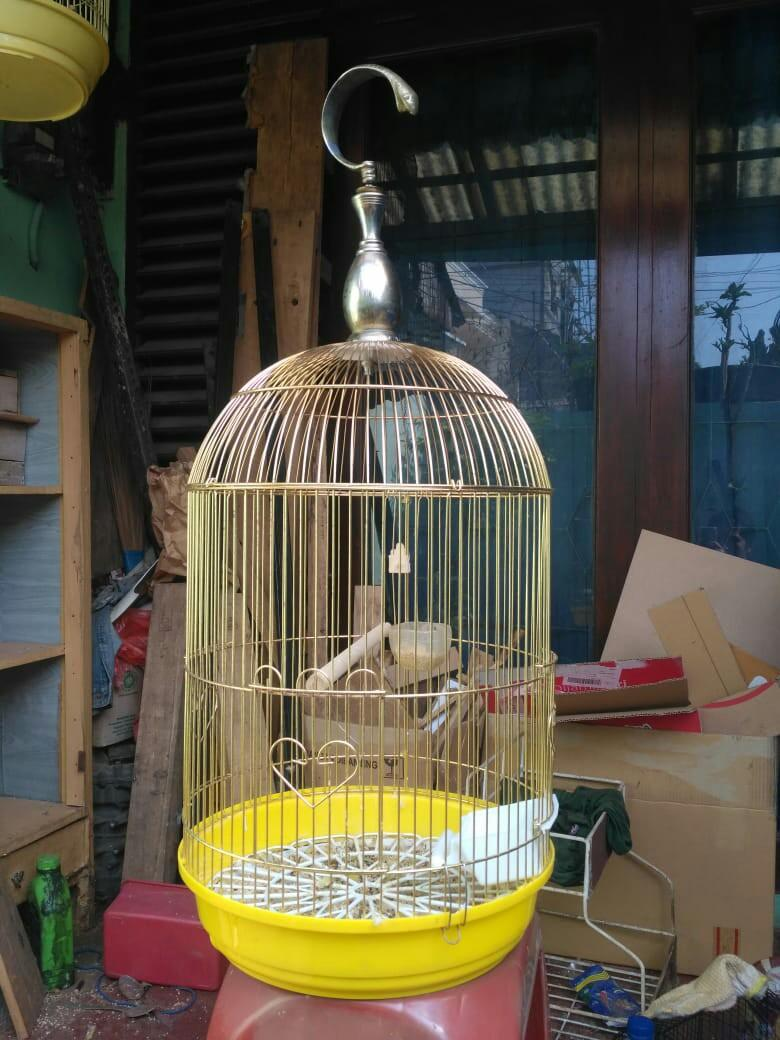 Sangkar Burung Kandang Burung