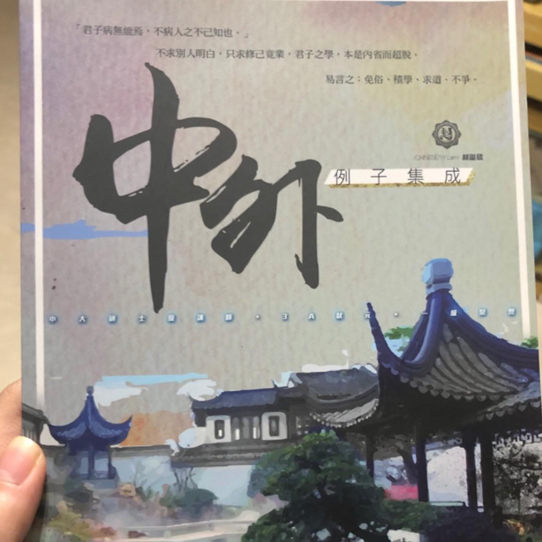 YY Lam 中外例子集成