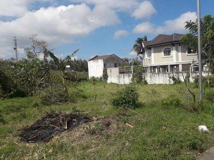 Punta Fuego Lot For Sale Nasugbu Lot Carousell Philippines