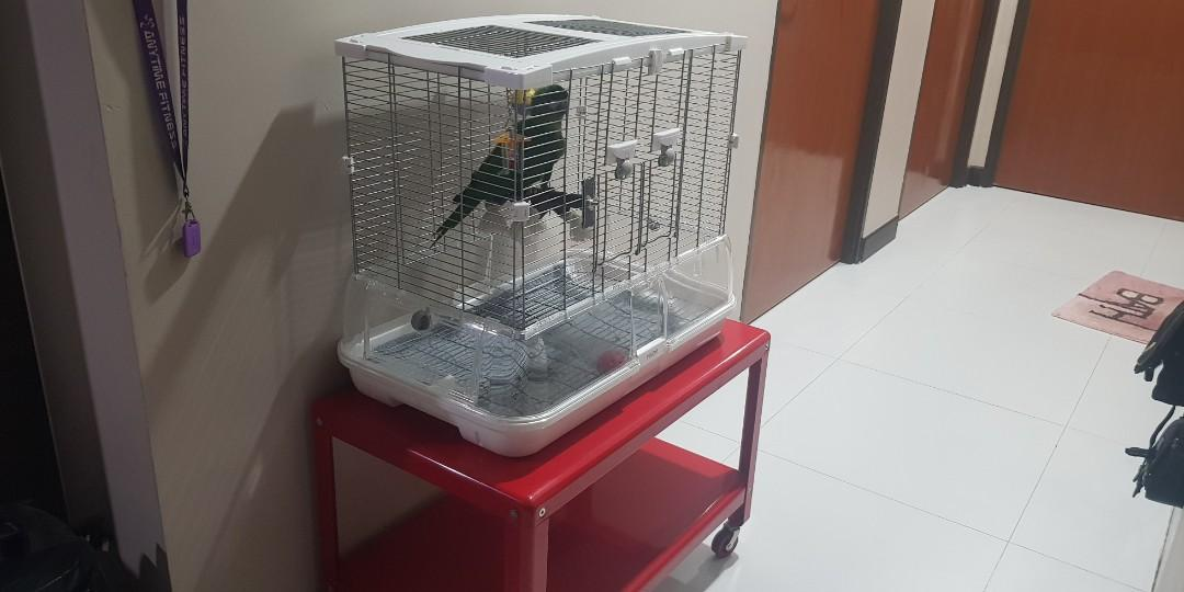 Vision M01 Cage