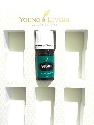 Peppermint 5ml Young Living