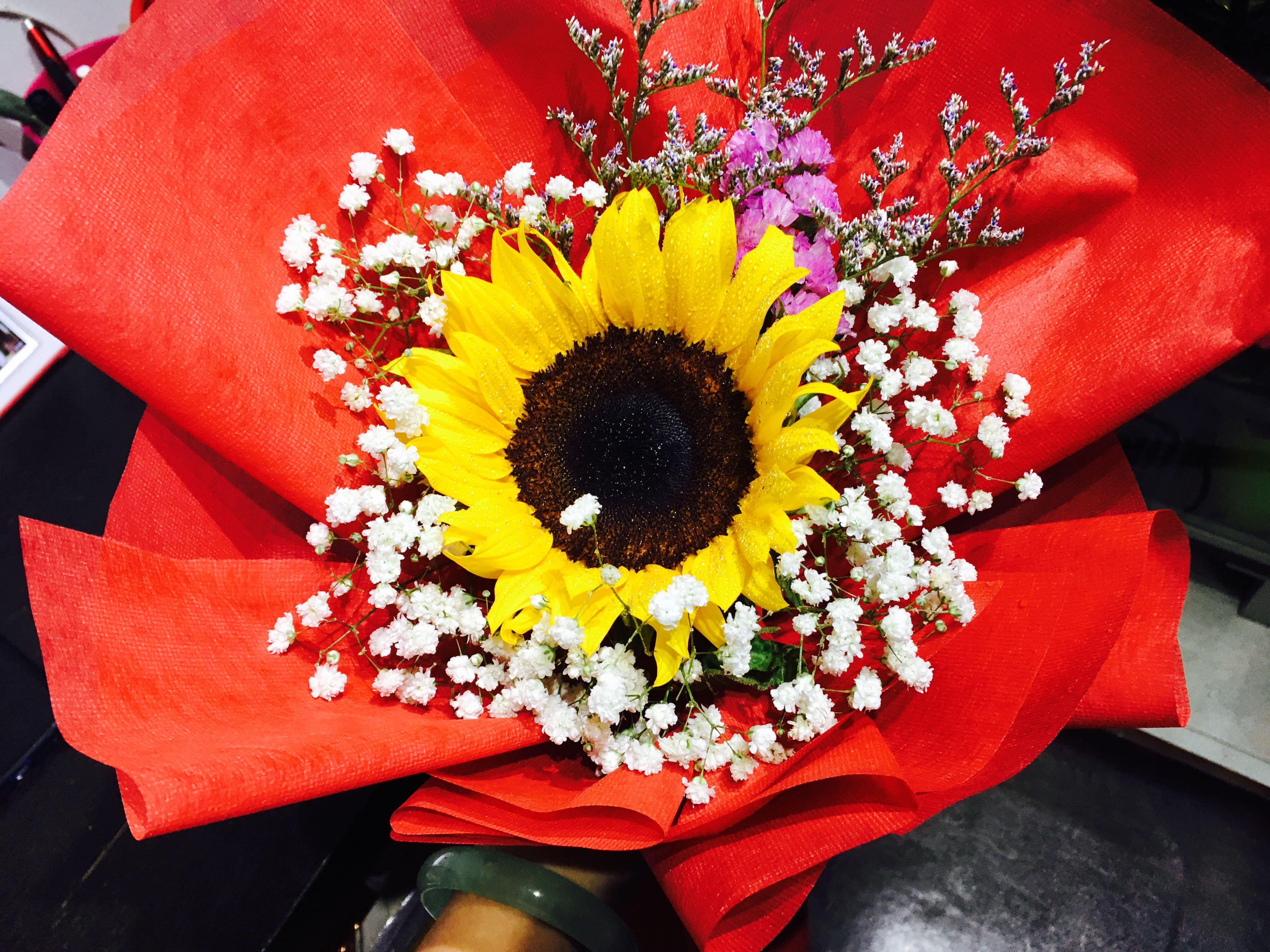 Huamama Sunflower