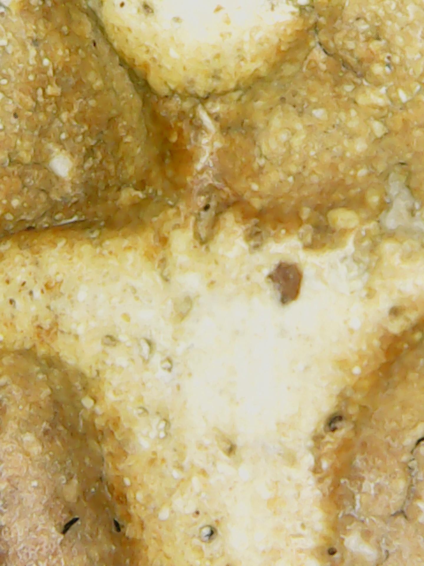 (B2)Phra Somdej Old Thai Amulet (Wat Rahkang)