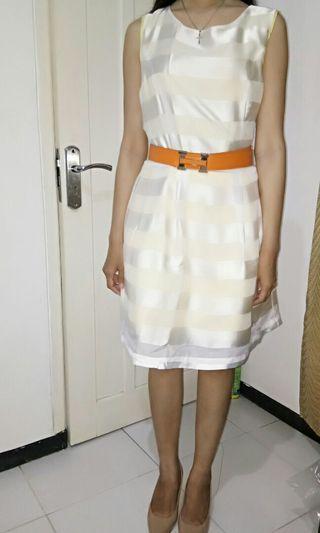 Striped Gold Princess Seam Dress