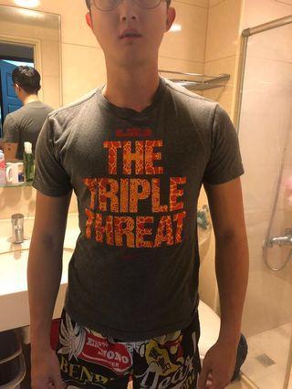 Nike NBA lebron james 詹姆士 tee T-shirt