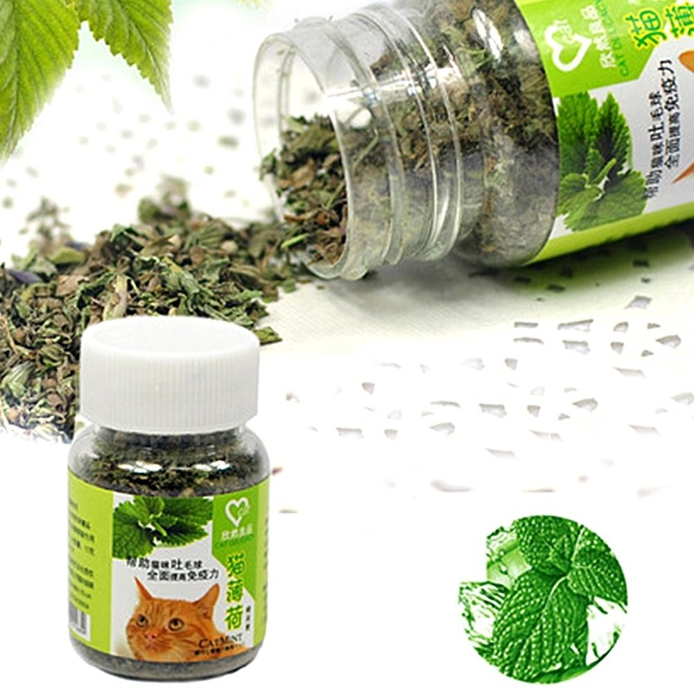 12g Organic Dried Catnip Nepeta Cataria Leaf & Flower Herb Cat Mint Healthy Food