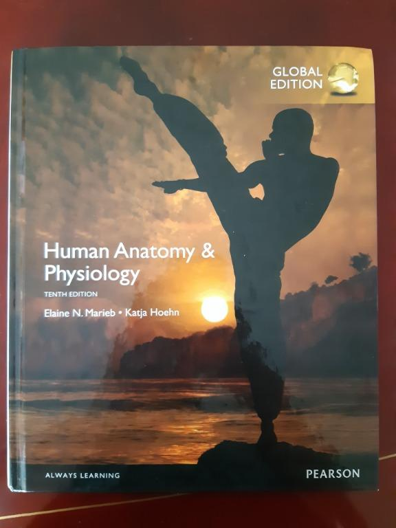 Human Anatomy and Physiology 10th Edition Textbook