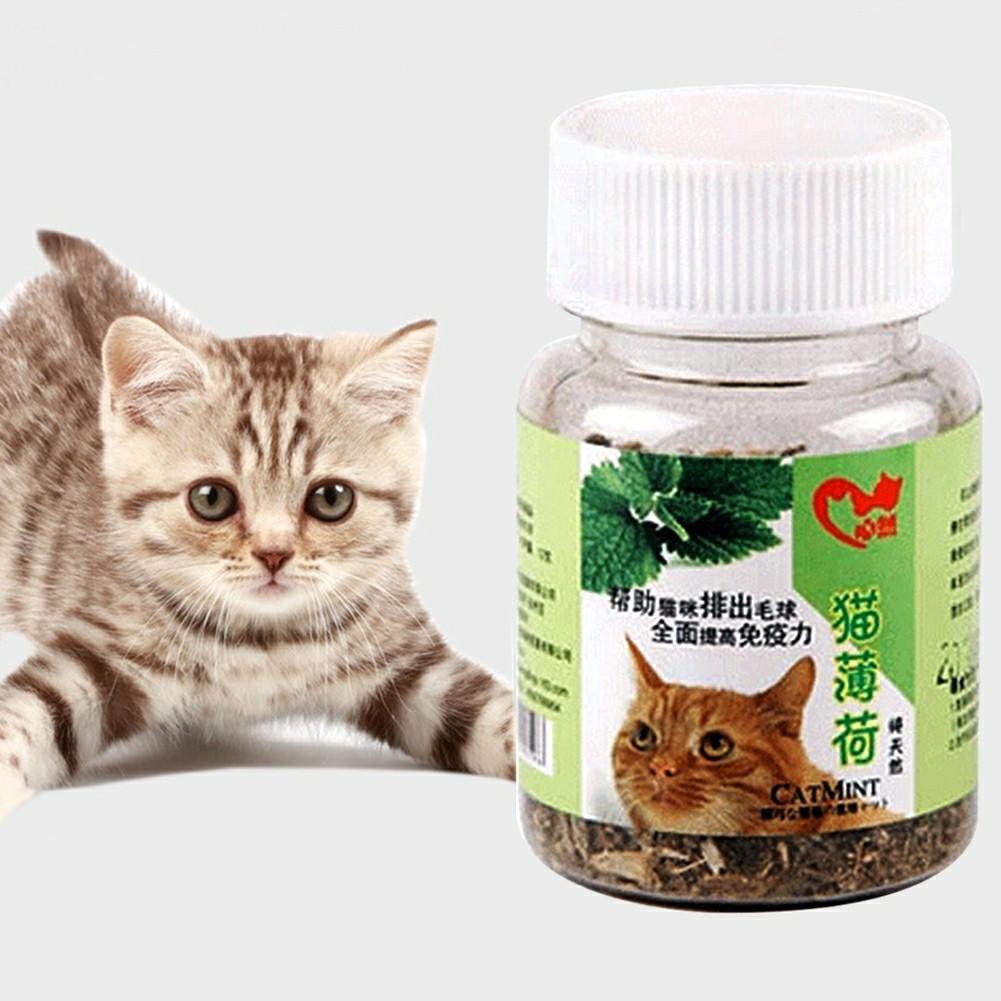 12g Organic Dried Catnip Nepeta Cataria Leaf & Flower Herb Cat Mint Healthy Food