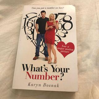 What's Your Number? 先生你哪位? 英文小說