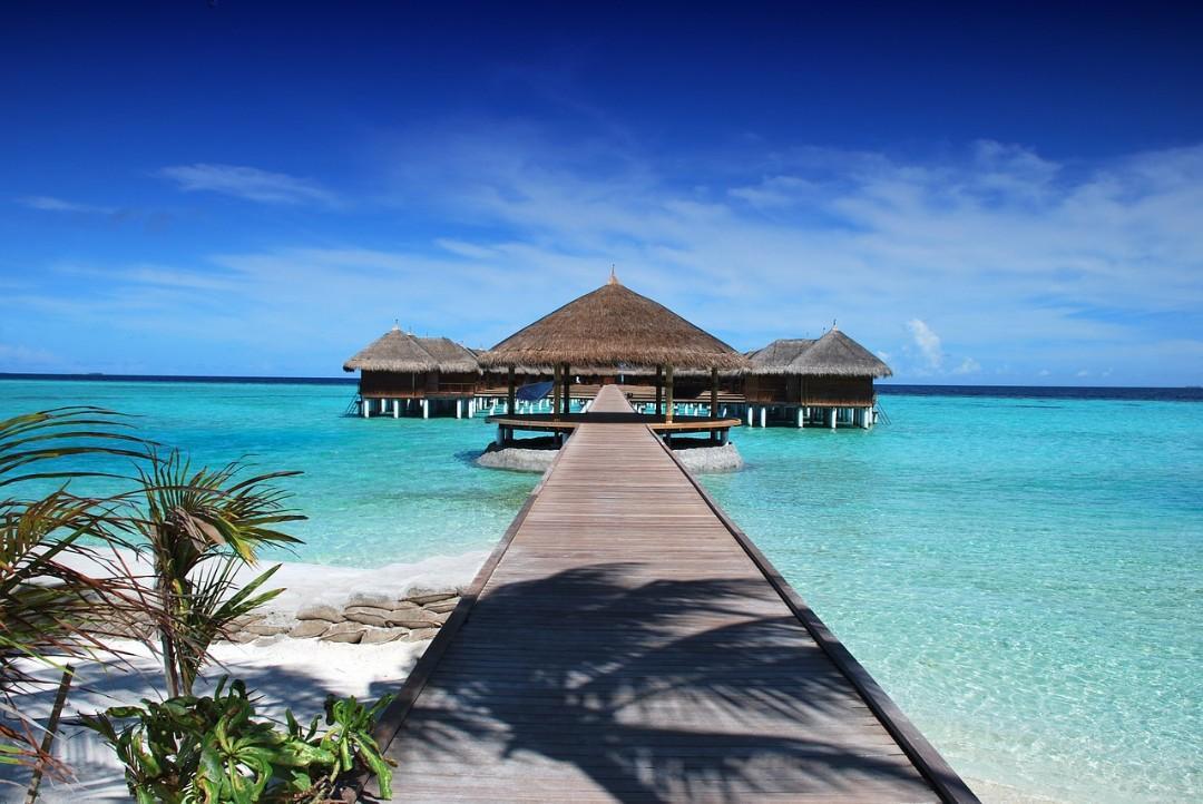 ⭐🌏 尋找旅遊生意合作夥伴 / Seek Business Partner in Travel Field 🌏⭐