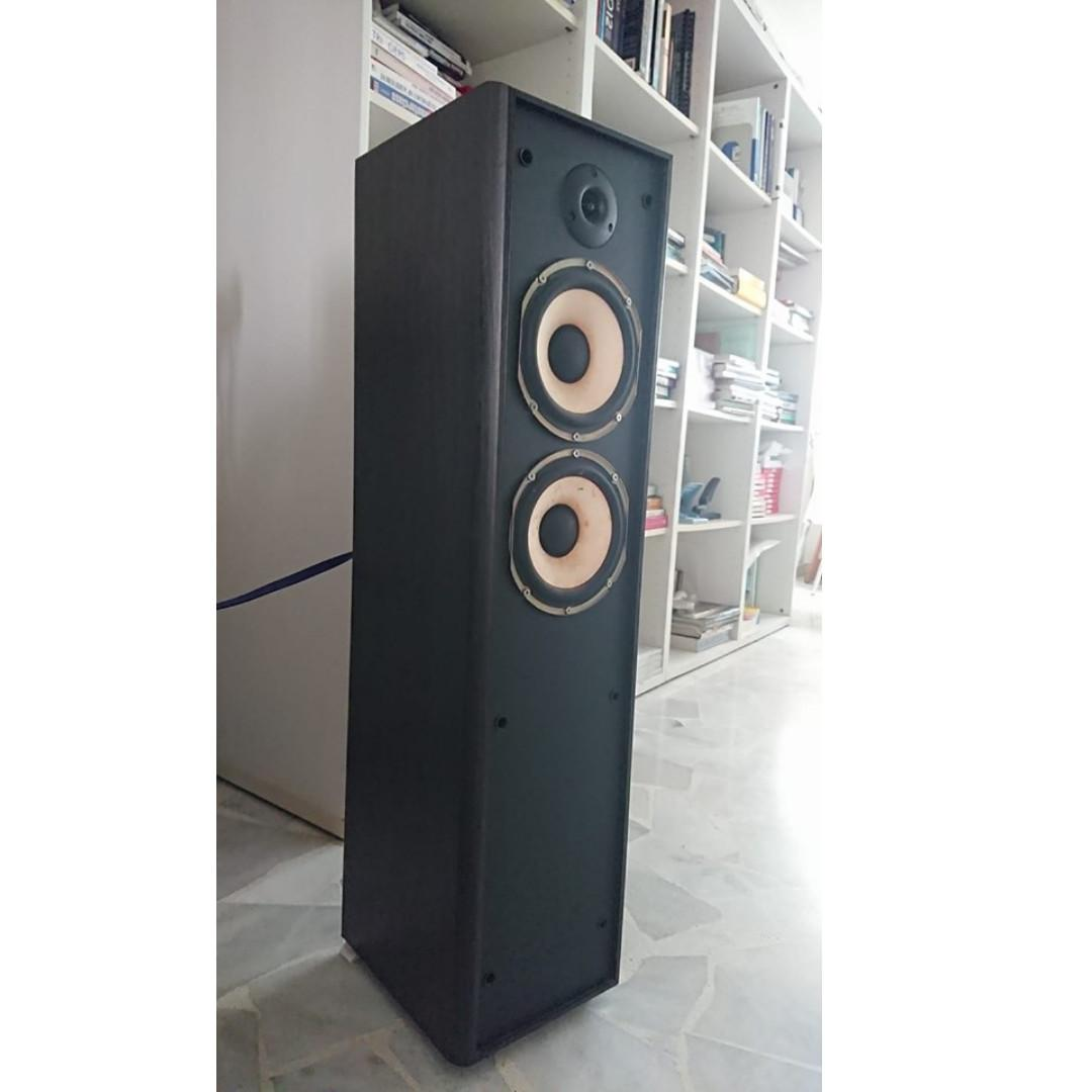 """Audiophile Custom Made """"One & Only"""" Floorstander: Punchy, Expressive Mids, Quiet Treble"""