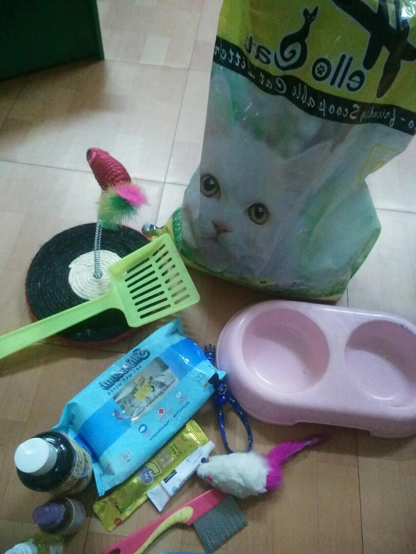 Perlengkapan kucing take all