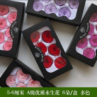 [RS] 5-6cm Preserved Rose