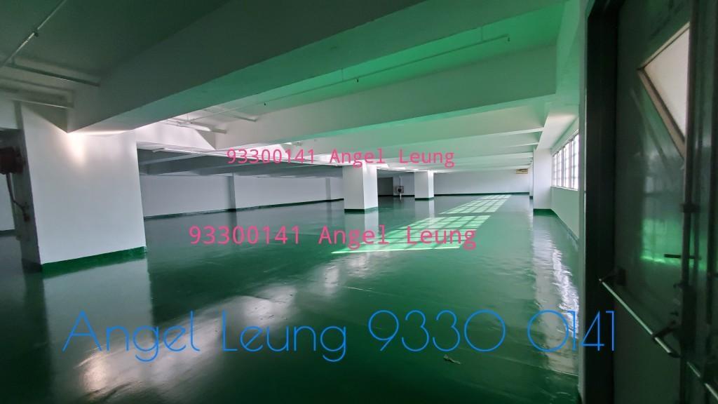 屯門高級大倉 93300141 Angel Leung