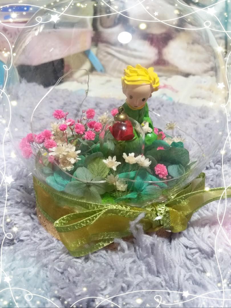 小王子, 永生花 ,Led燈,水晶球